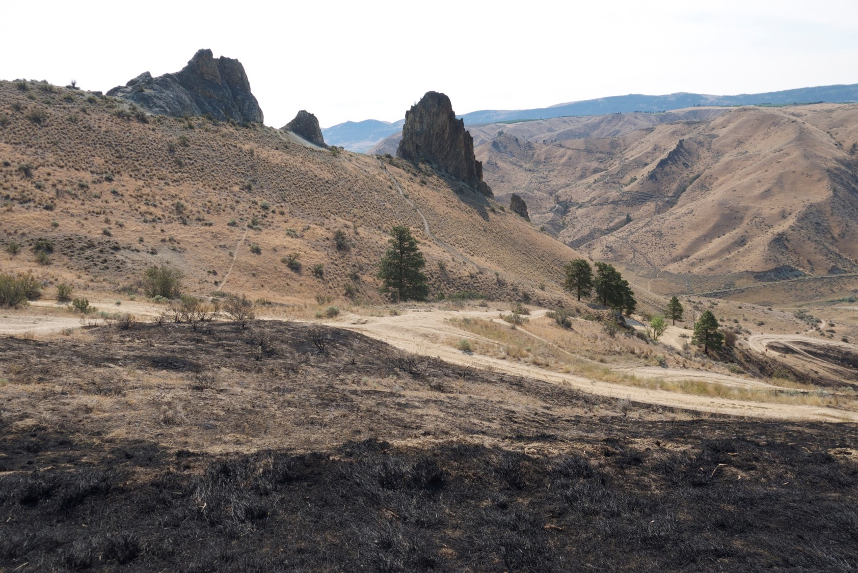 wildfire photo monitoring