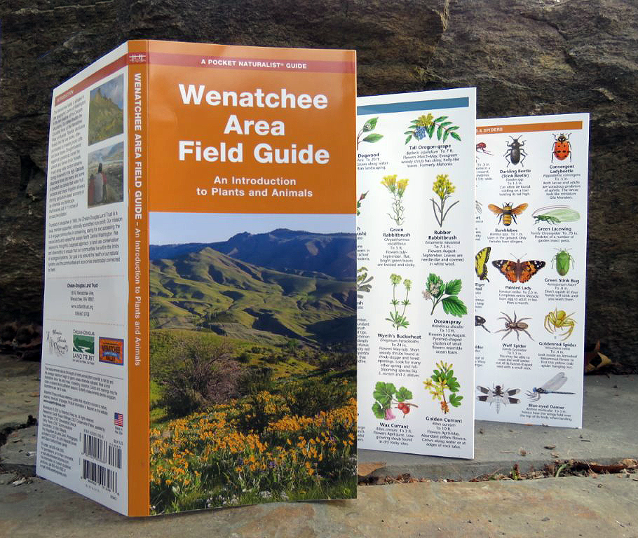 Wenatchee Area Field Guide