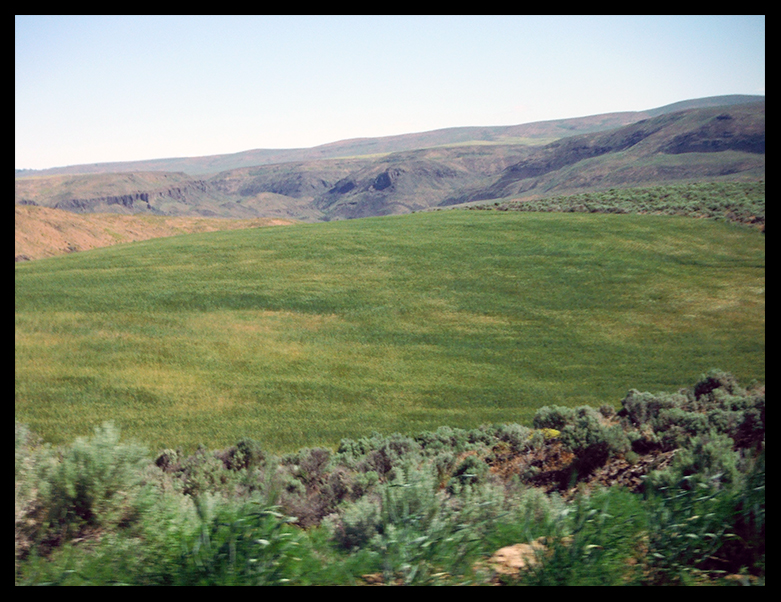 protected habitat for greater sage-grouse