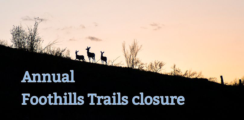 Foothills seasonal trails closure