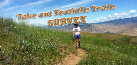 Trails Survey