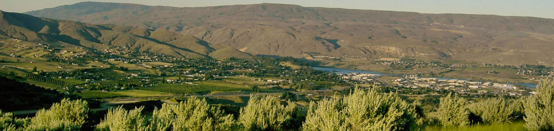 What do you want Chelan and Douglas Counties to look like 50 years from now?